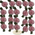 Small Pink Ribbon Rose With Green Leaves